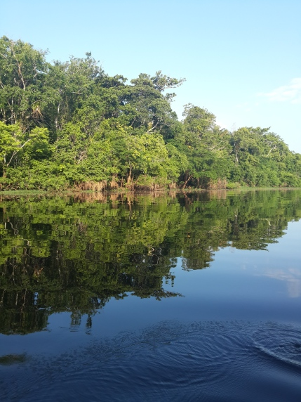 The dark waters of The Rio Negro
