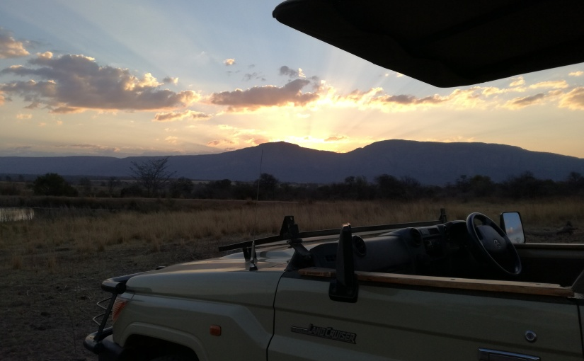 All things wild and wonderful in the WaterbergMountains